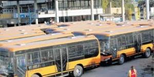 Pioneer buses