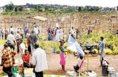 Veterans encroach on the Lubiji Swamp last year