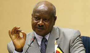 President M7 is ready to deal with ADF rebels