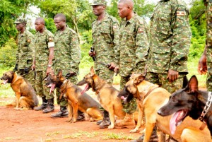 UPDF sniffer dogs