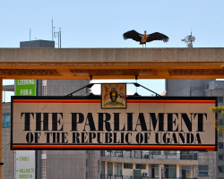 MPs claim brokeness, ask for early allowances
