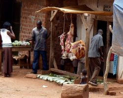 MAN ARRESTED FOR SELLING ROTTEN MEAT
