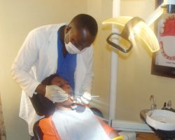 Government urged to train more dentists