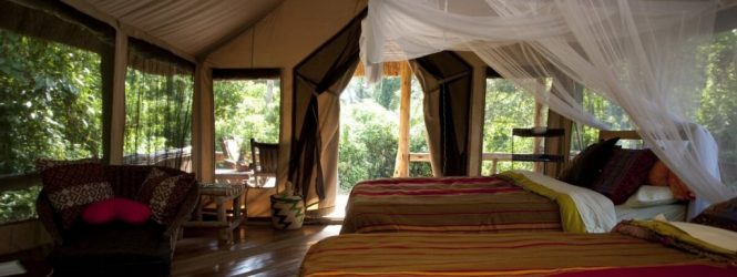 Primate Lodge Uganda listed among Hotels to Visit in 2017 by Essence