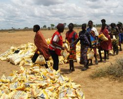 New weather pattern threatens food insecurity in the Karamoja sub region.