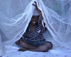 Health ministry rolls out mosquito net distribution in Central Uganda