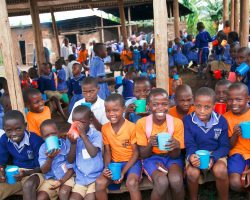 Government to distribute milk freely to school going children