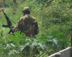 Mob kills armed SPLA-IO in Moyo district